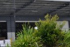 Berala Wire fencing 20